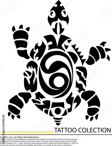 detailed illustration of a tortoise on a white background