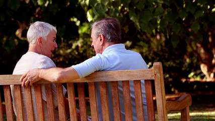 Mature couple discussing together on a bench