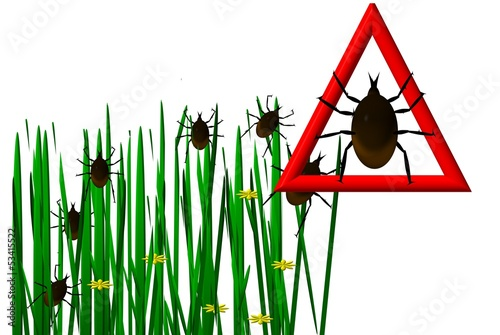 Ticks in the grass image