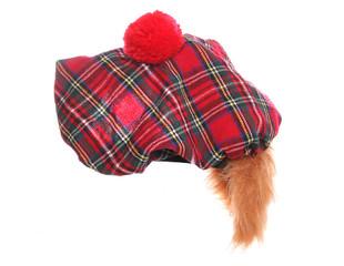 scottish tartan hat