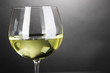White wine glass on grey background