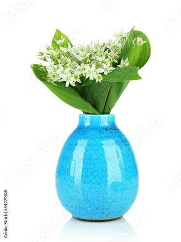 Beautiful mountain daffodils in  color vase, isolated on white