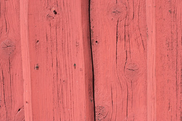 Background - rustic painted wood in bright pink