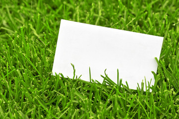 Business card in grass