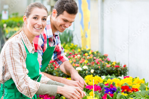 Gardener in market garden or nursery