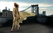 Fashion model posing sexy on rooftop with bridge on background - 53431799