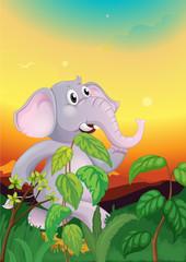 An elephant walking in the field