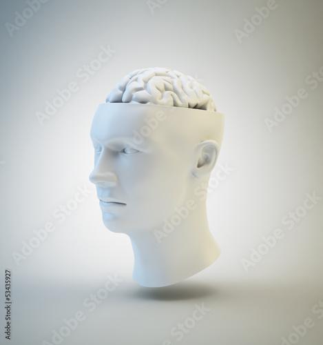 Human Intelligence and psychology