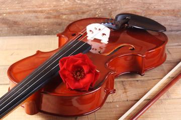 violin y rosa