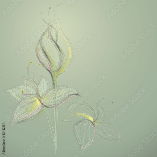 Sketch of abstract flowers / Vector illustration
