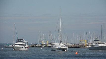 Boats in Chesaleake bay, Annapolis, maryland
