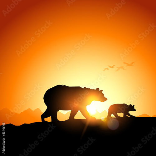 Wild Grizzly Bears