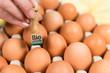 braune eier erhalten bio stempel