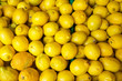 canvas print picture - Fresh lemon for sale