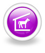 "Violet Icon ""Stable"""