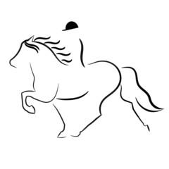 Isländer mit Reiter