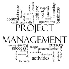 Project Management Word Cloud Concept in Black and White
