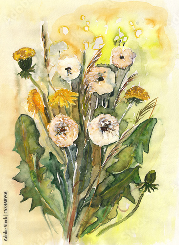 Dandelions Bouquet © Heidrun Gellrich