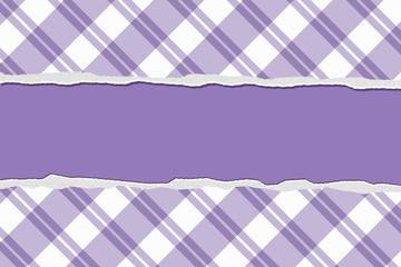 Purple Striped Torn Background for your message or invitation