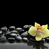 Fototapety Black Zen stones and orchid on calm water background