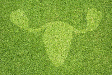 Ovary icon on green grass texture and background