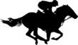 Jockey - 53479592
