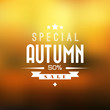 Autumn sale vector background
