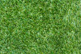 Artificial grass background poster