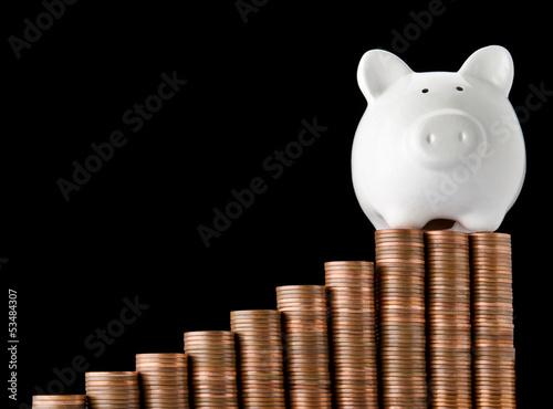 Successful piggy bank