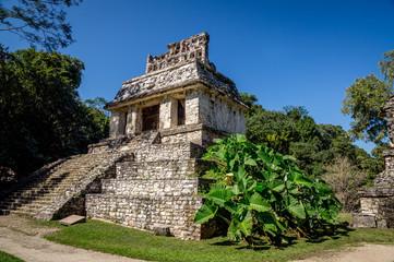 Palenque : Temple du comte ciel bleu
