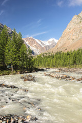 The mountain river flowing down from glaciers