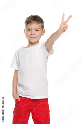 Cute young boy shows victory sign