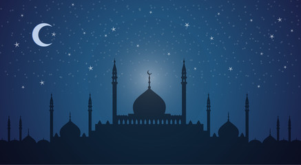 Skyline: minarets and domes night