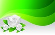 environmental green flowers illustration
