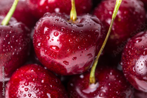 Close-up of fresh cherry berries with water drops. © viktoriagavril