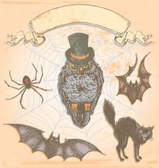Hand Drawn Vintage Halloween Spooky Owl Vector Set
