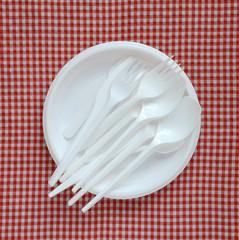 Empty plastic plate.
