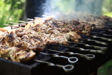 Shish kebab on the grill with smoke.
