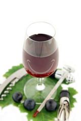 verre de vin rouge à déguster