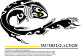 Vector image of an carp koi tattoo, illustration - vector