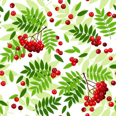 Seamless pattern with rowan leaves and berries. Vector.