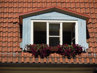 Red roof, dormer and flowers (Riga, Latvia)