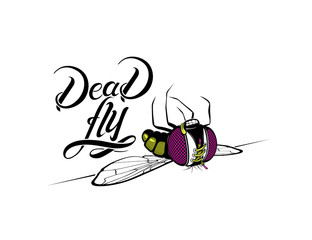 Funny cartoon dead fly