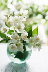 Fragrant jasmine bouquet