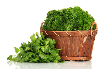 Useful herbs isolated on white
