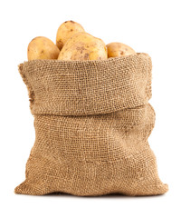 Ripe potatoes in burlap sack