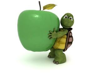 tortoise with an apple