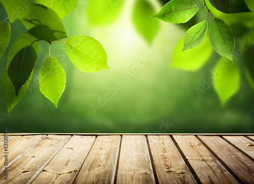 summer background with wooden surface