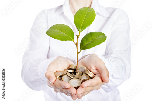 Money growing on businesswoman hands