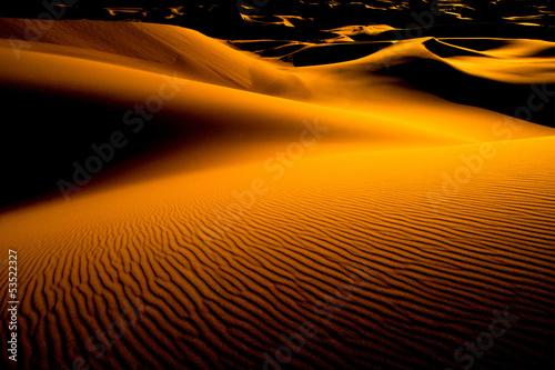 Fototapeten,wildnis,wüstenkaktus,sanddünen,mongolei